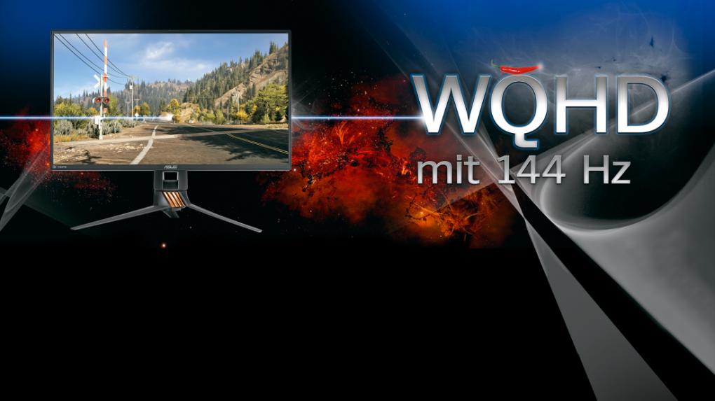 [PLUS] Gestochen scharf! WQHD-Gaming mit 144 Hz - der große Praxisguide