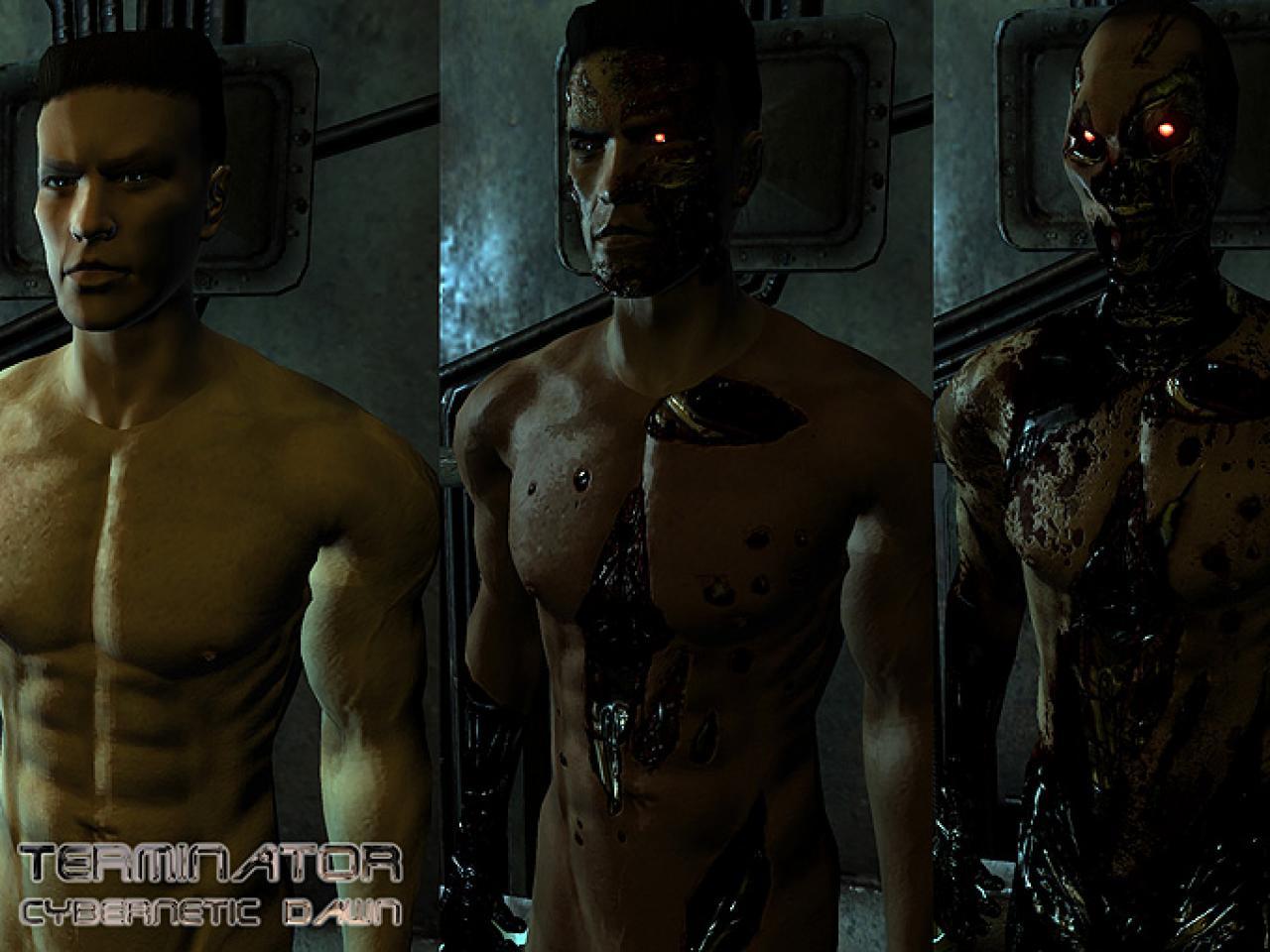 Fallout 3 text mods nud nudes comics