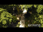 Entropia Universe: Crysis-Engine inside
