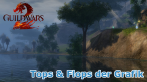 Guild Wars 2: Die Tops & Flops der Grafik