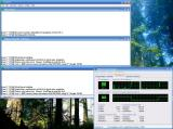 Screenshot zu Tools - 2007/06/Prime95_253_03.jpg