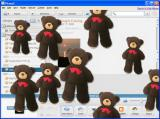 Screenshot zu Panorama - 2008/03/142620-02-bear.jpg