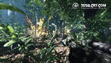 Screenshot zu Crysis - 2006/06/076.jpg