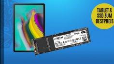 Booten von einer NVMe-SSD mit Sandy-/Ivy-Bridge-Hardware - Anleitung