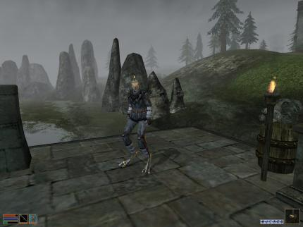 The Elder Scrolls III - Morrowind: Gloomy and dirty.