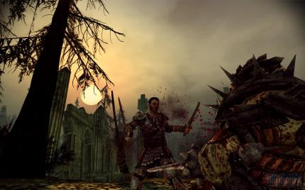 Dragon Age Origins (7)