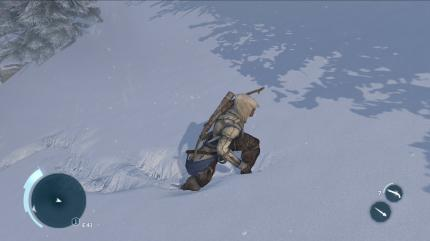 Assassin's Creed 3 im Test (24)