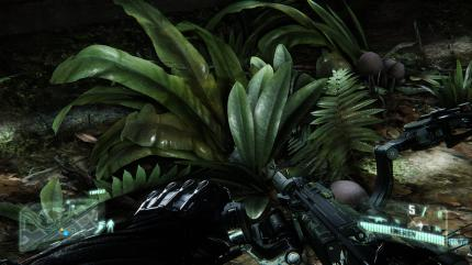 Crysis 3 im Technik-Test (6)