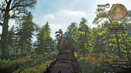 PCGH-Benchmarkszene in The Witcher 3 (DX11)