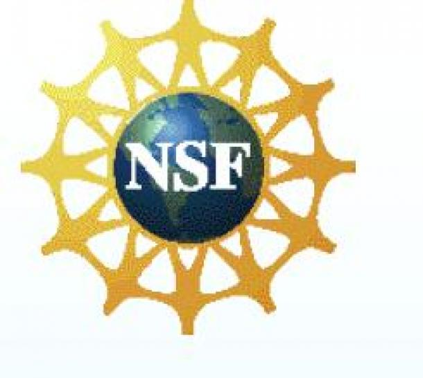 NSF: Logo der National Science Foundation. (Bild: NSF)