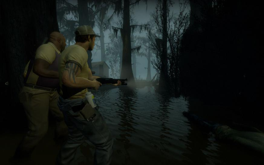 Left 4 Dead 2: Maximum graphics (1)