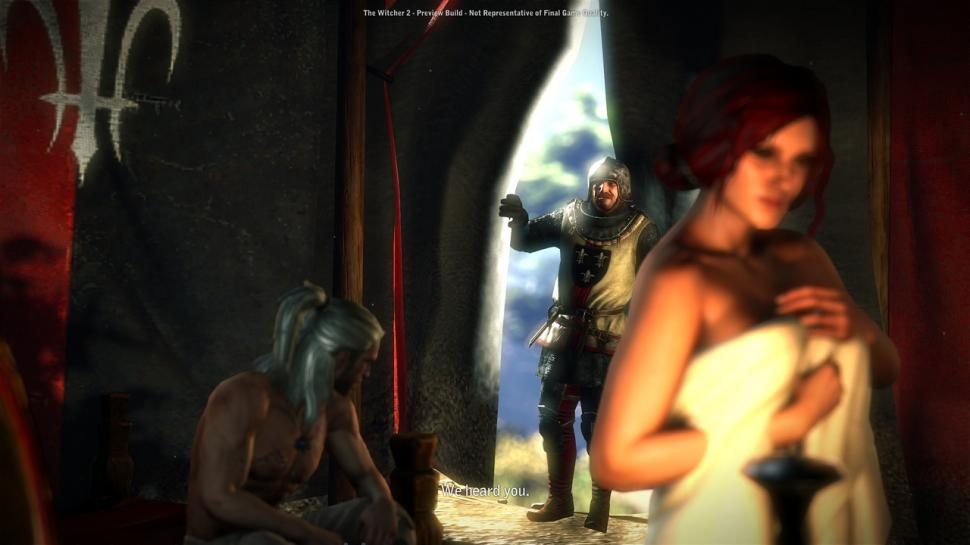 The Witcher 2 (26)