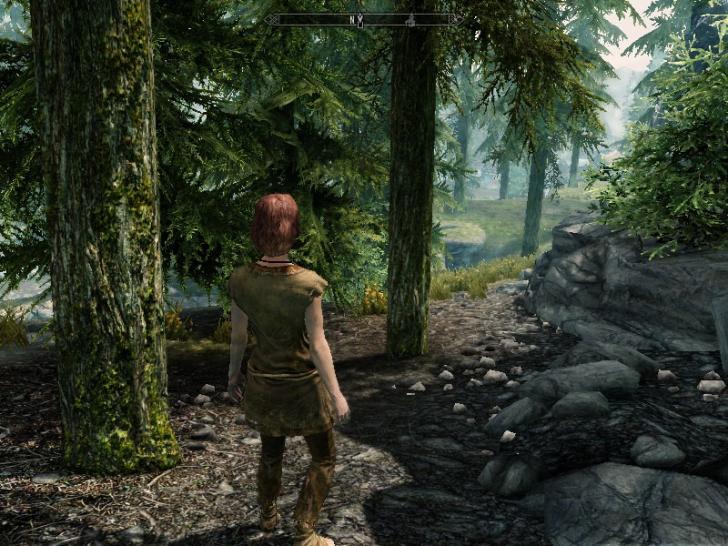 ENBSeries для Skyrim для The Elder Scrolls V: Skyrim.