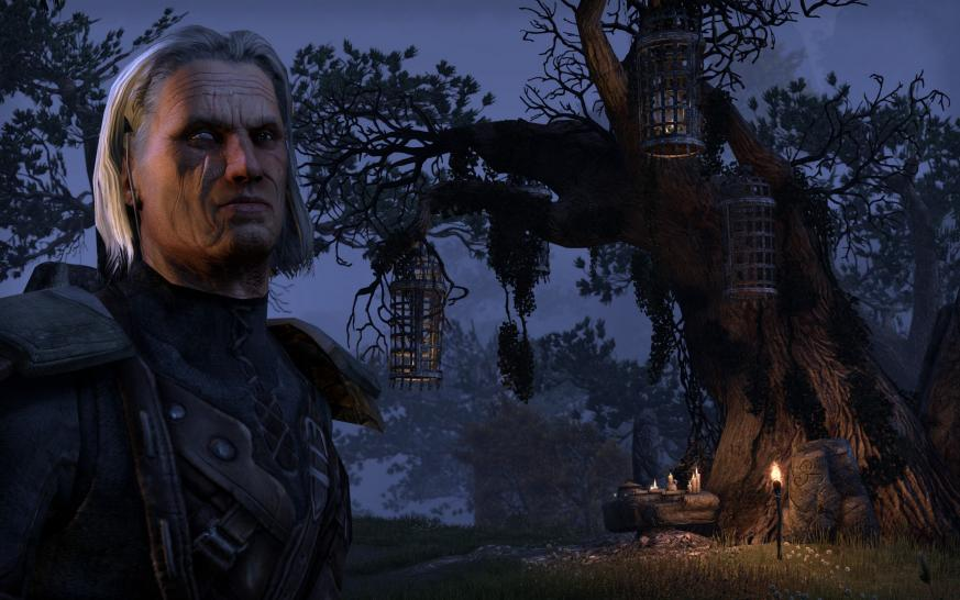 The Elder Scrolls Online - Gamescom-Screenshots (1)