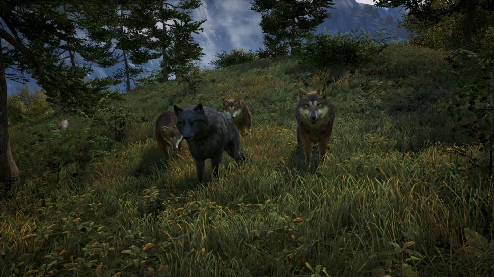 Far Cry 4: Nvidia zeigt Hairworks in Aktion (7)