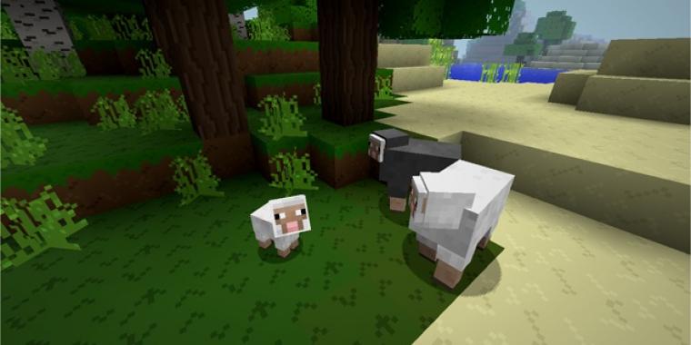 Minecraft ich kann mich nicht einloggen