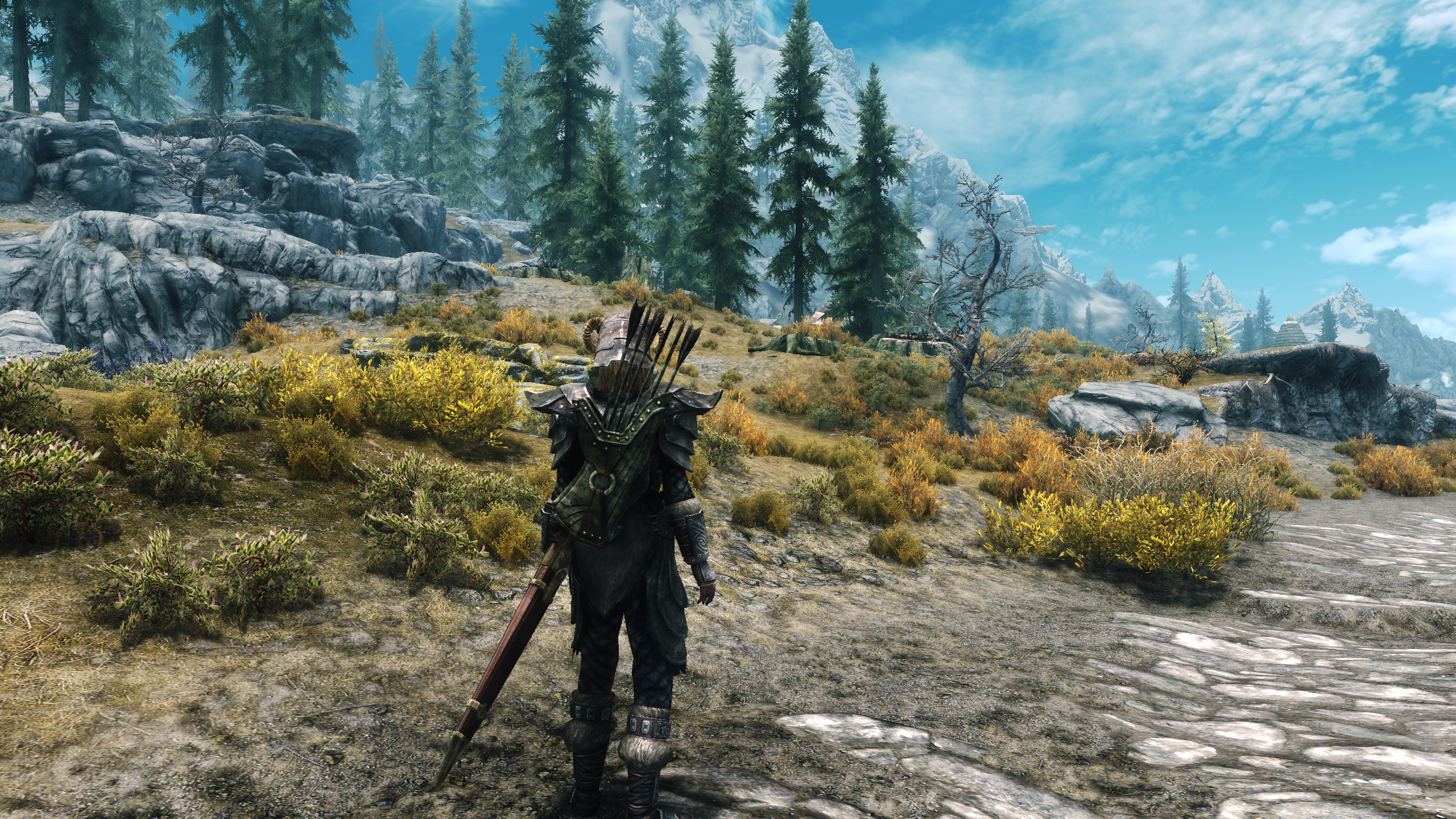 skyrim enb how to turn on ssao
