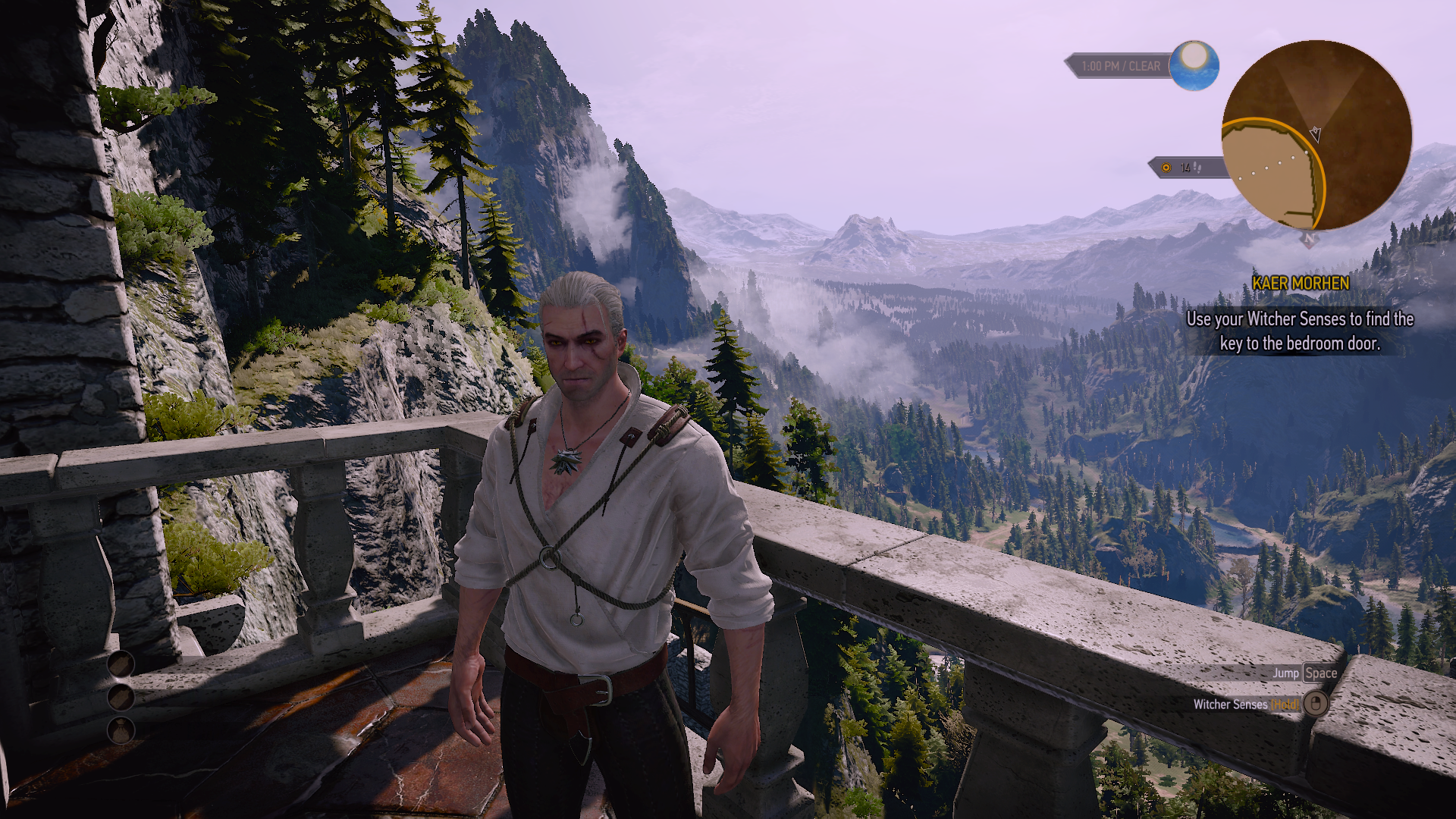 The Witcher 3 HIGH-pcgh