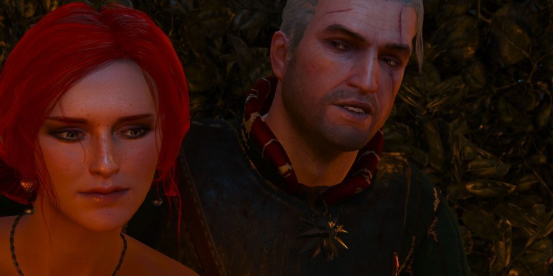 The Witcher 3 (6)