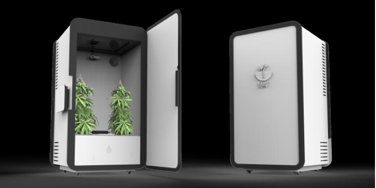 start up projekt cannabis anbau im automatisierten mini gew chshaus samt app. Black Bedroom Furniture Sets. Home Design Ideas